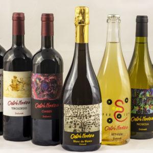 Discovery box 6 bottiglie di vino di Castel Noarna
